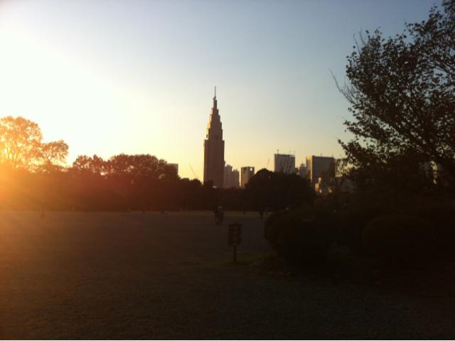新宿御苑から見た新宿の街並み